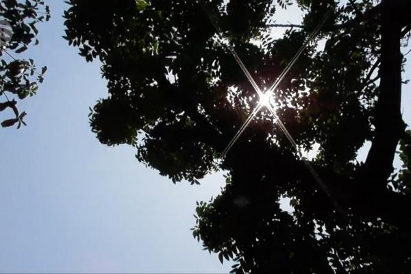 Gerak semu matahari pengaruhi naiknya suhu di Jateng