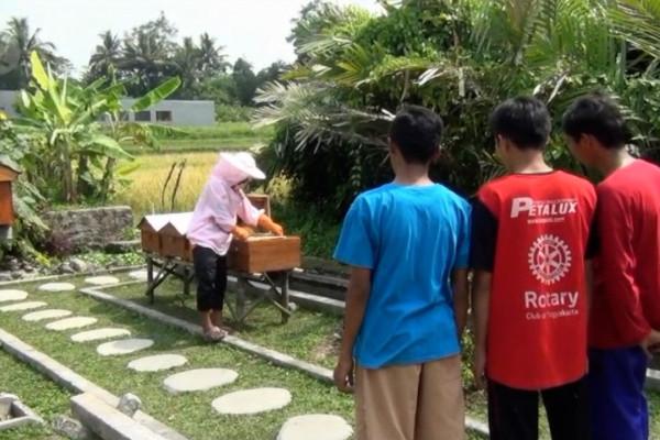 Berwisata sembari belajar tentang lebah madu