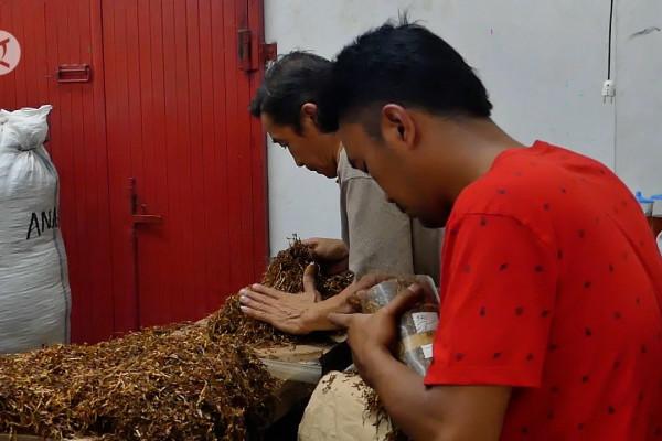 Pemkab Temanggung minta pabrik rokok beli tembakau petani